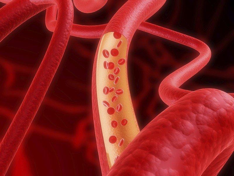что такое паразиты в организме человека