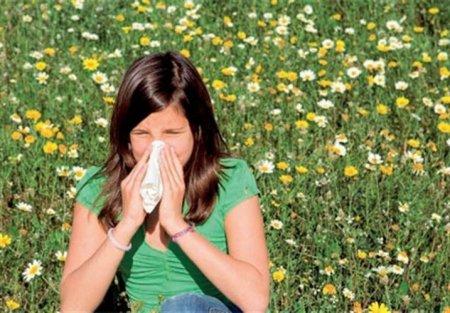 Существует ли лекарство от аллергии нового поколения?